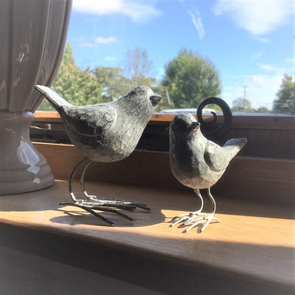grey-birds-2