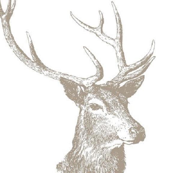stag-napkins