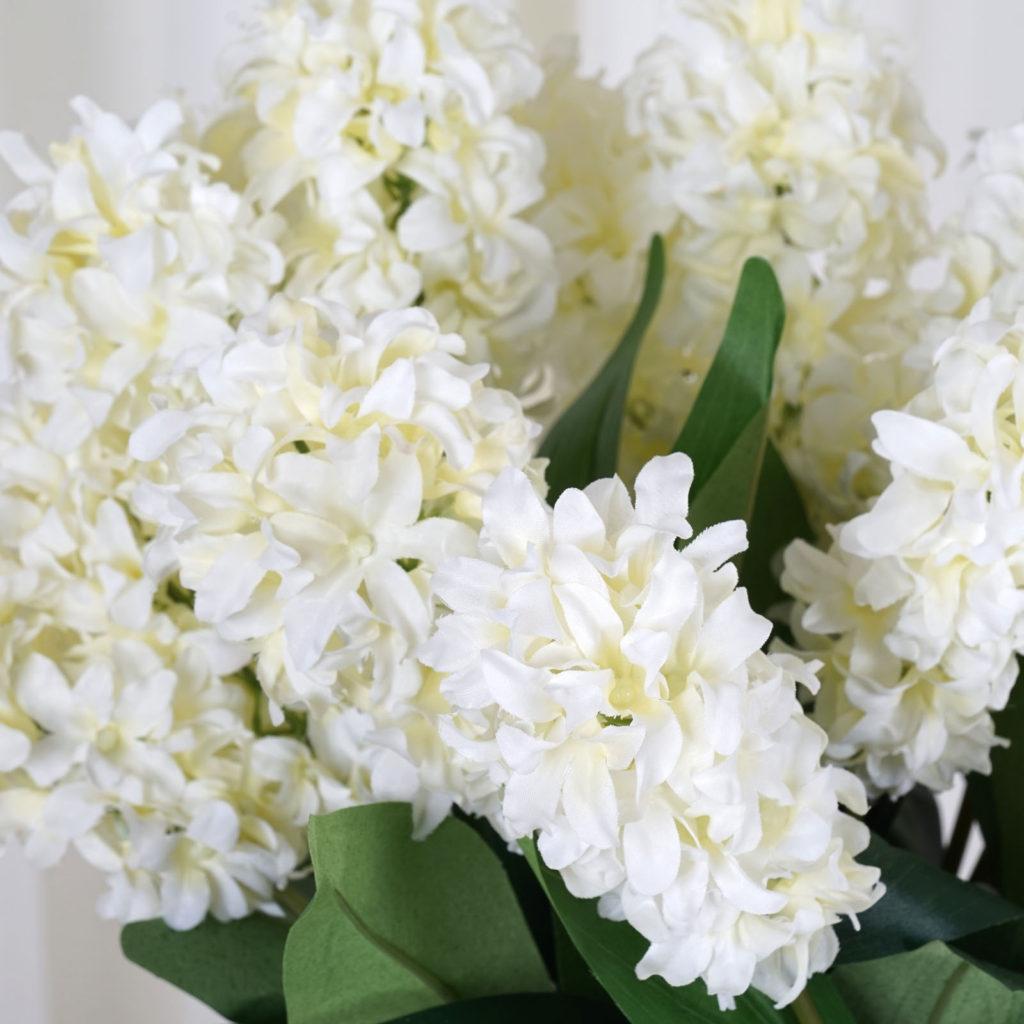 white-hyacinth-1