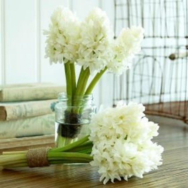 white-hyacinth-bunch_600x600