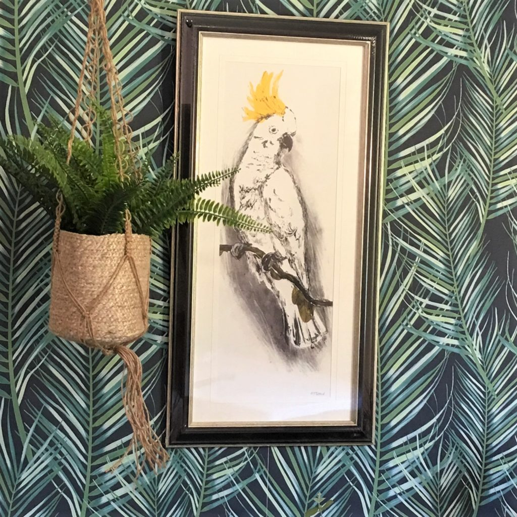 Crested Crown Parrot Framed Picture Tutti Decor Limited