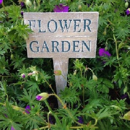 Flower-Garden-Squat-Stake