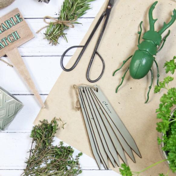 vegtable-garden-stakes