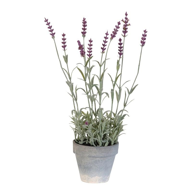 PRD331-lavender-pot