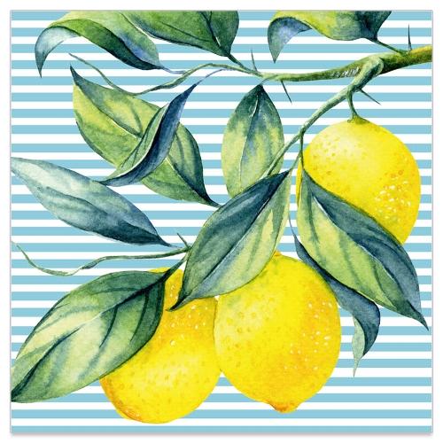 131865_lemon-grove-napkins