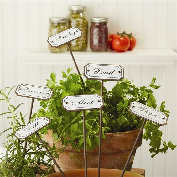 Kitchen garden herb marker set tutti decor ltd for Kitchen garden decoration