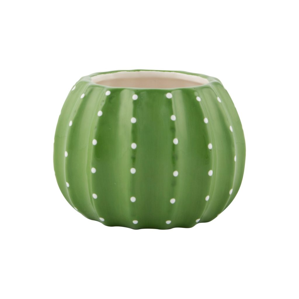 Cactus ceramic planter cacti plant pot tutti decor ltd Cactus pots for sale