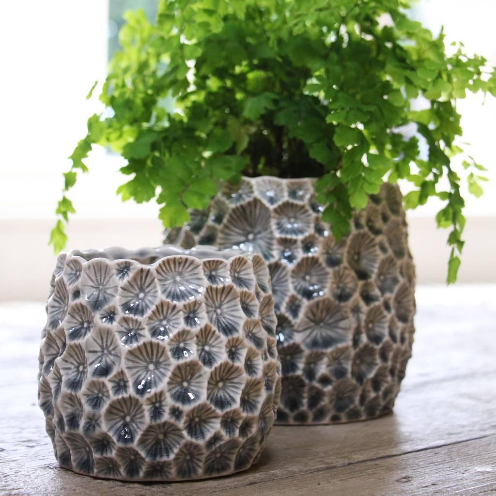 crator-pot-holder