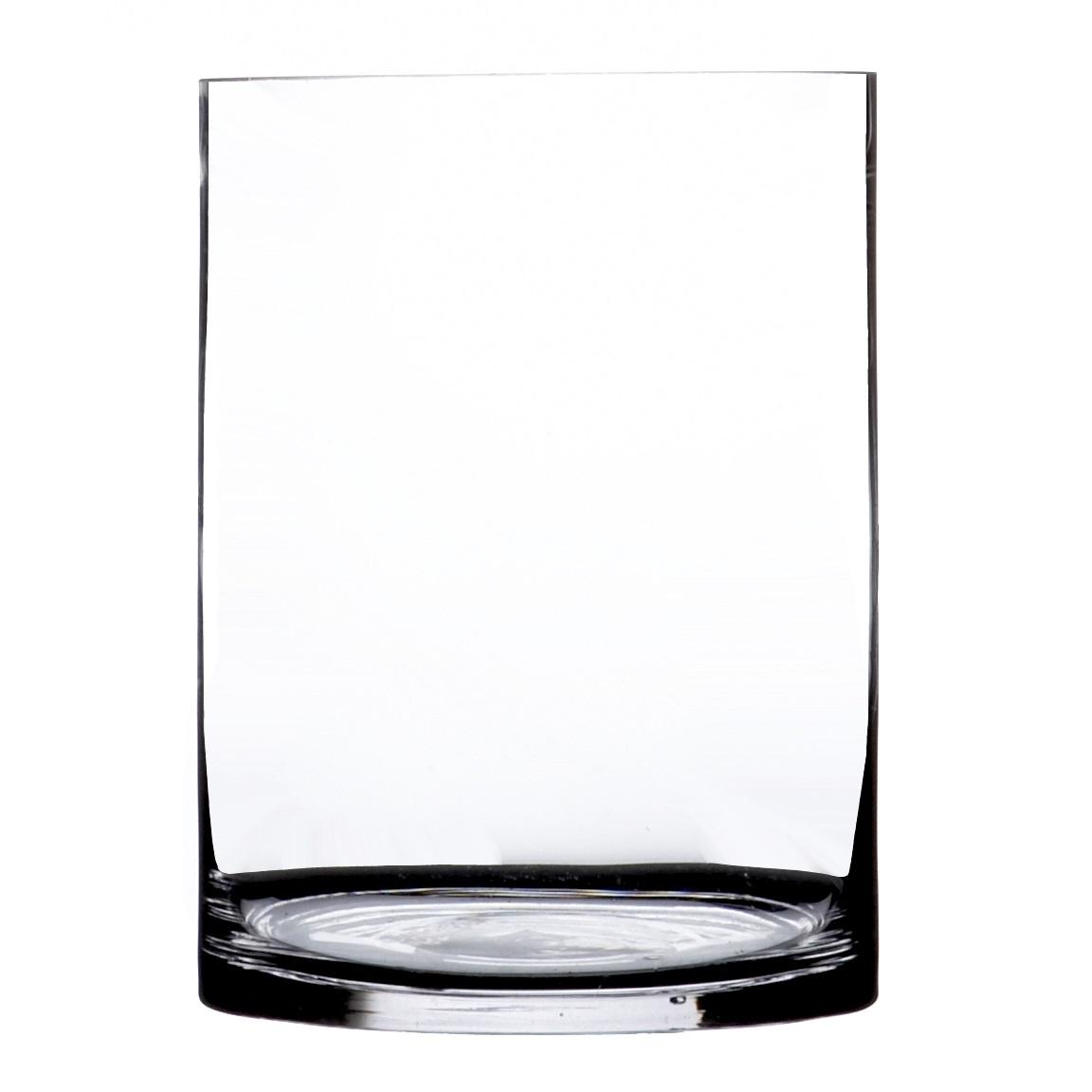 glass accents vases vase plants cylinder