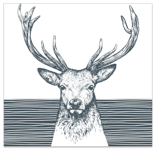 131933_sta-head-napkin-grey