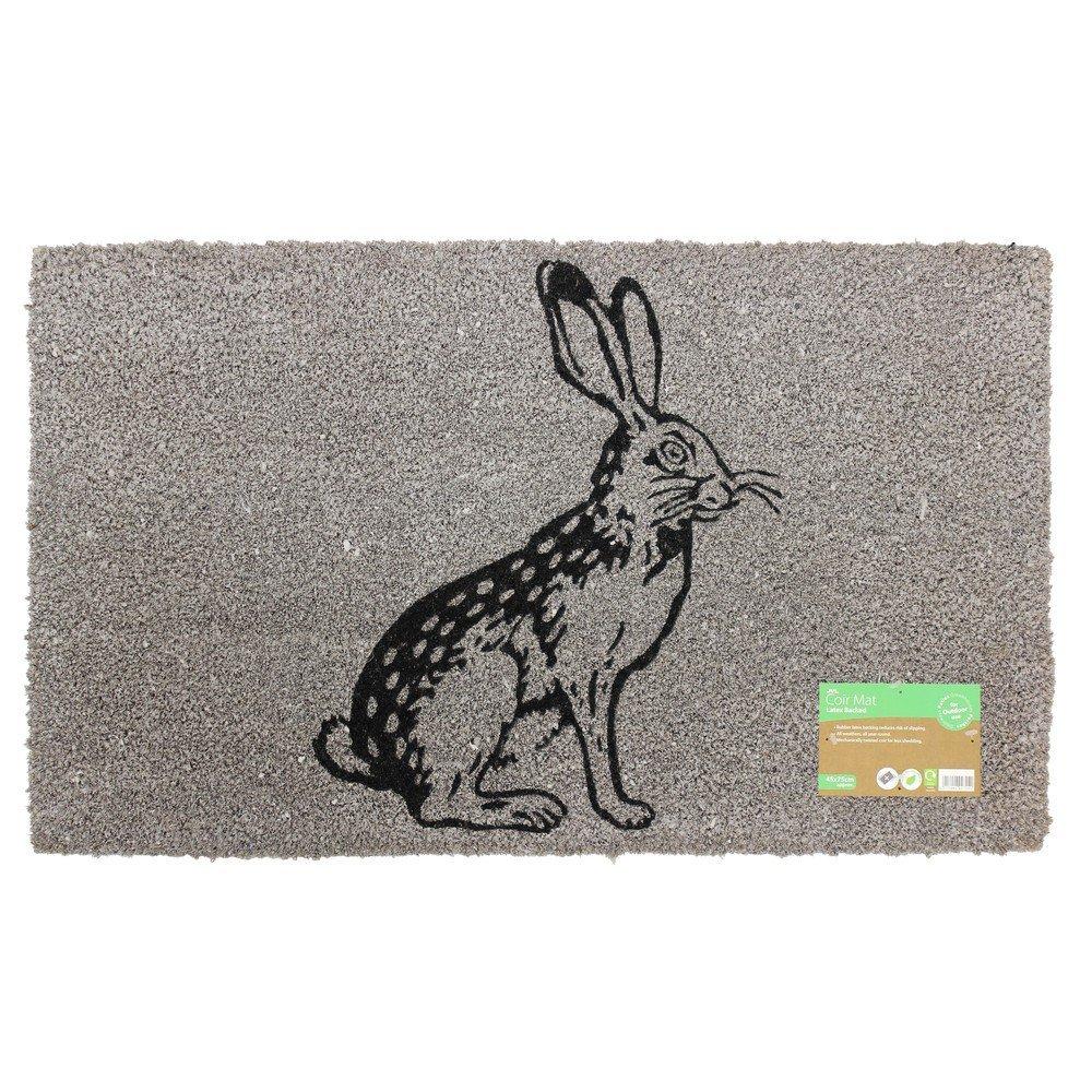 02-726-Hare