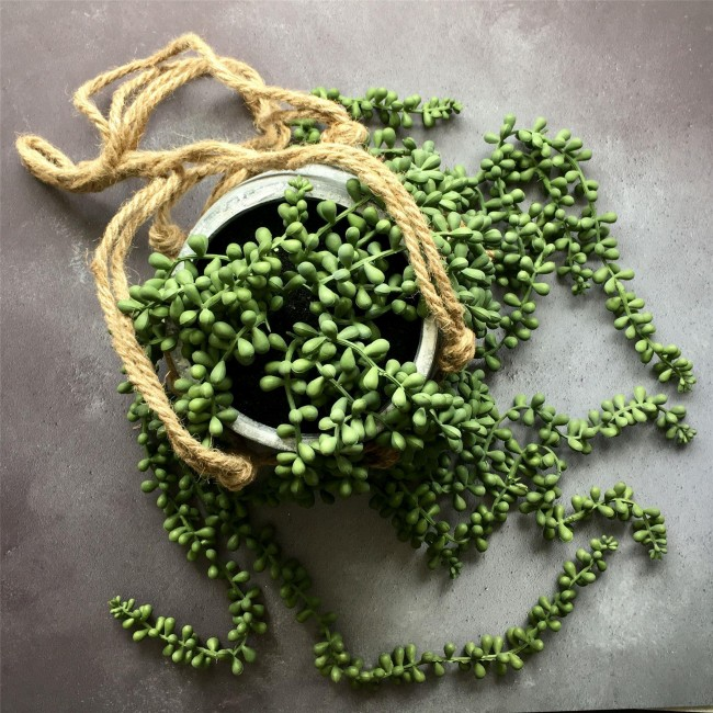 string-pearls-artificial-hanging-pot-plant-mood