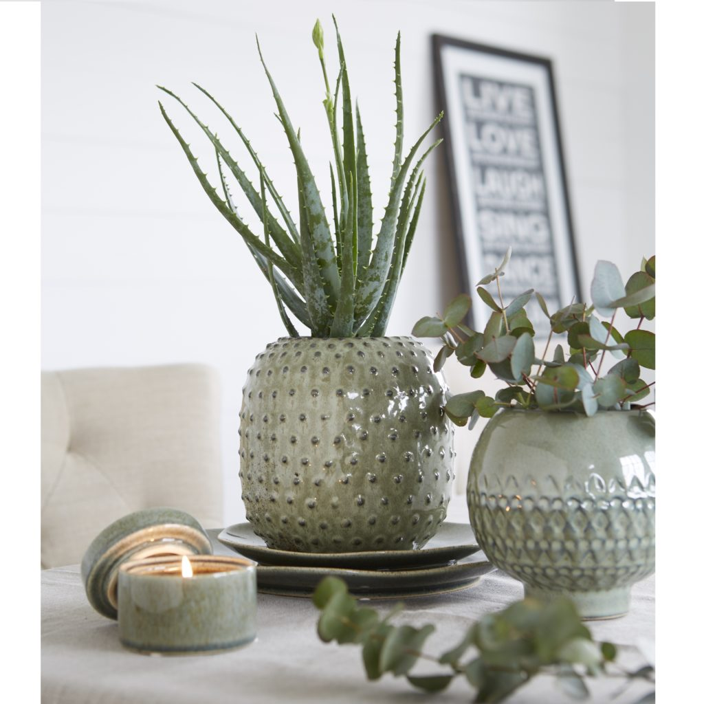 cactus-vase-matching-candle-pot-mood-original