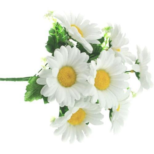 daisy-bunch