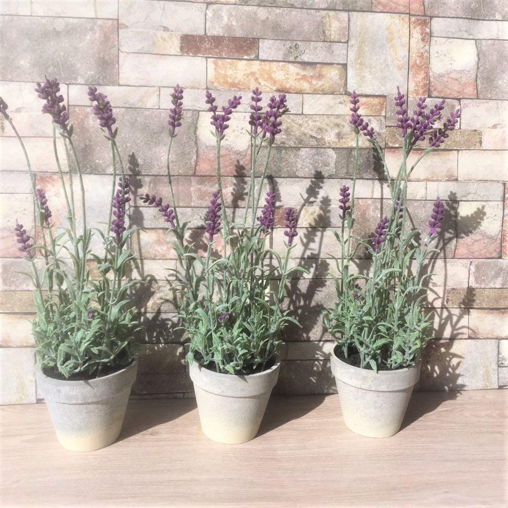 lavender-pots