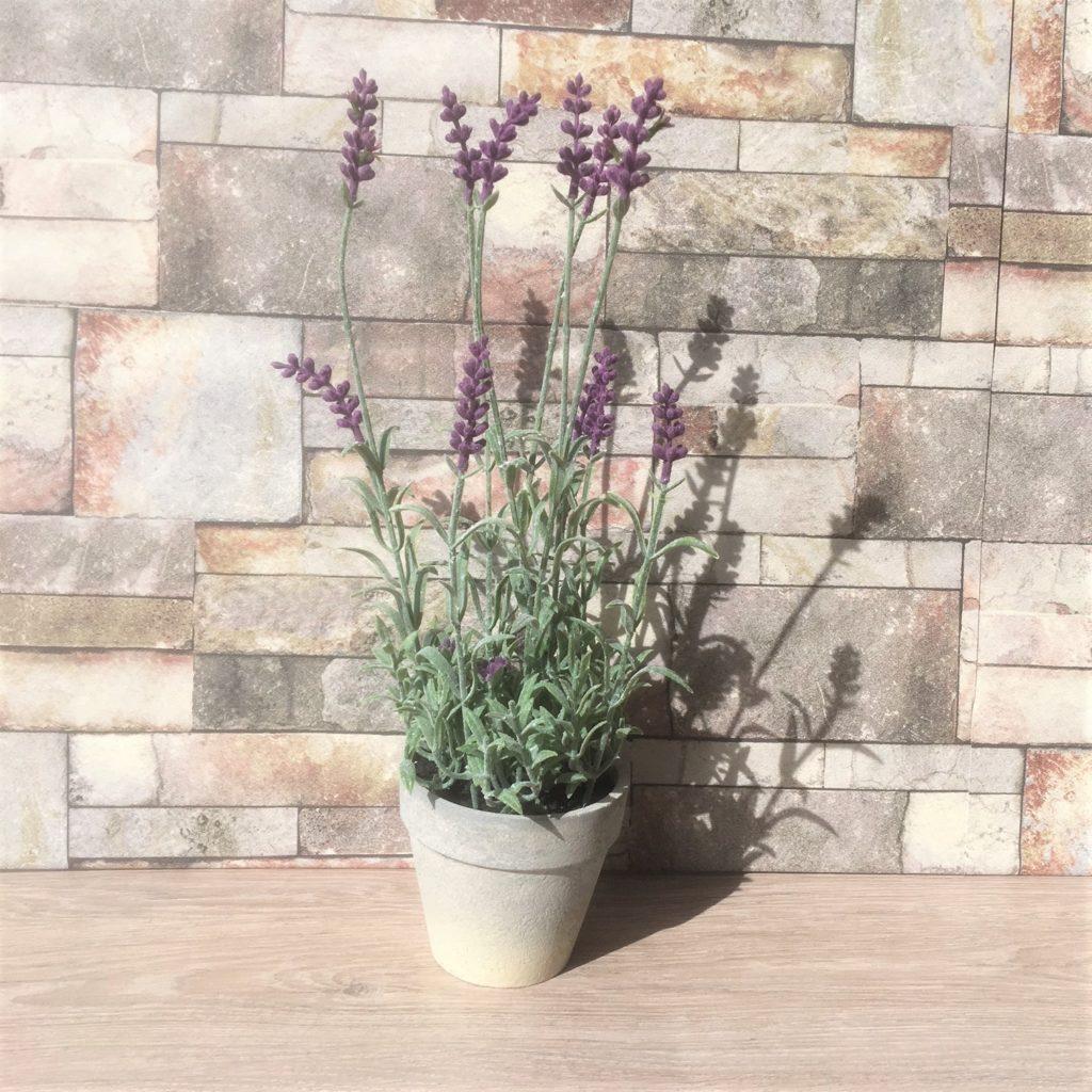 lavender-pots-2