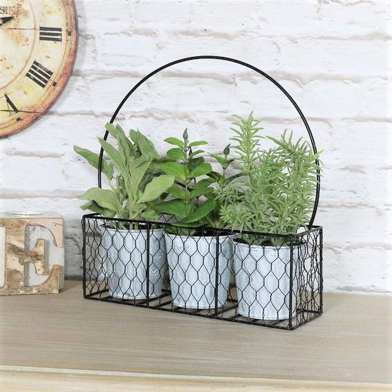 set-3-herbs