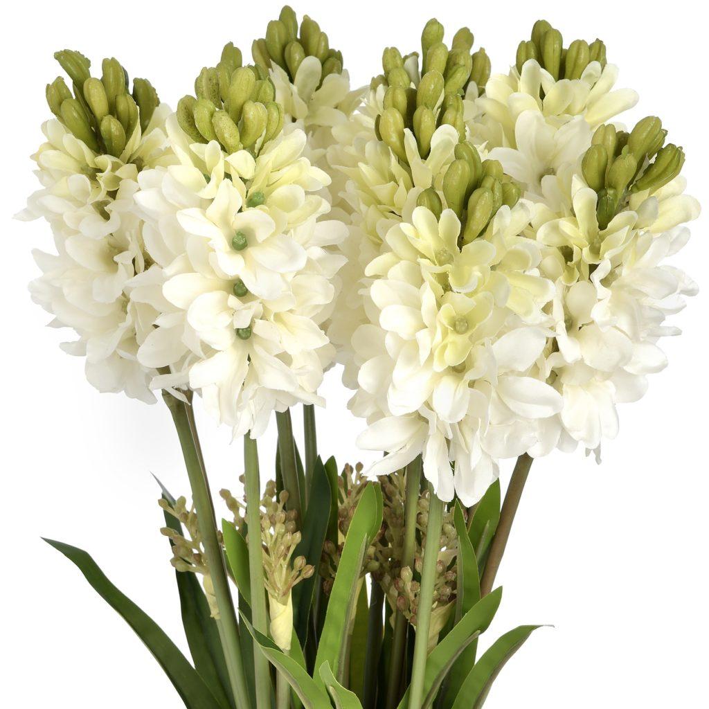 16603-white-hyacinth-stems
