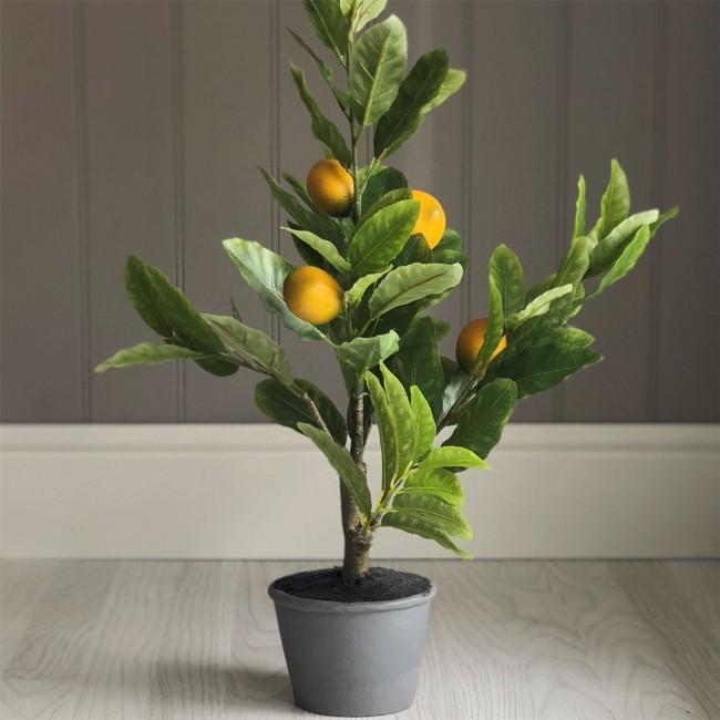 artificial-lemon-tree-mood