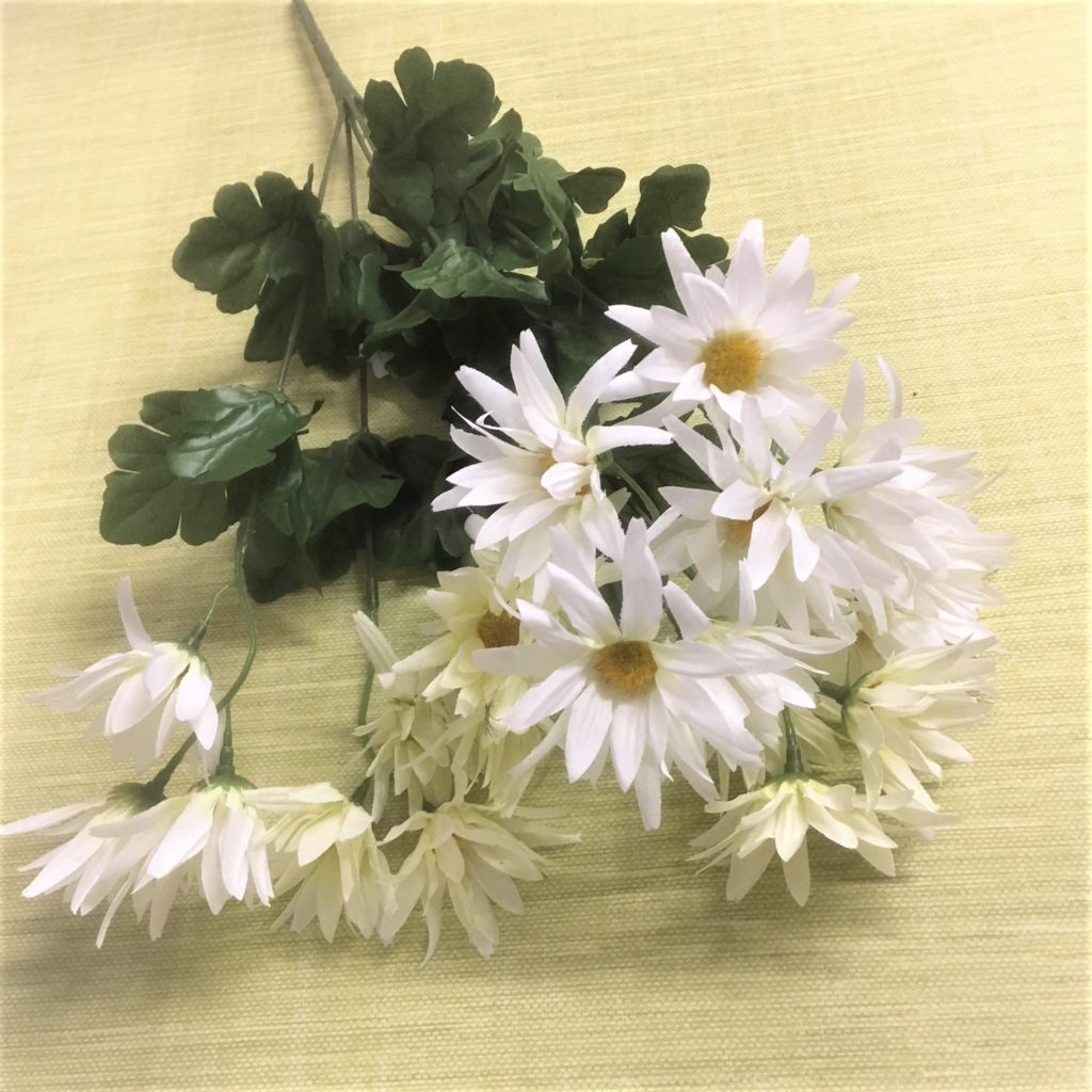 white-wild-daisy-bunch-4