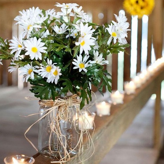 white-wild-daisy-bunch