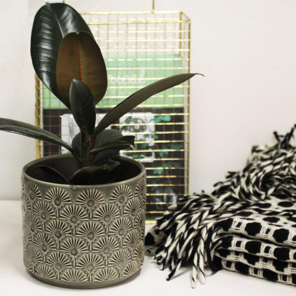 ceramic-fan-pattern-plant-pot-3