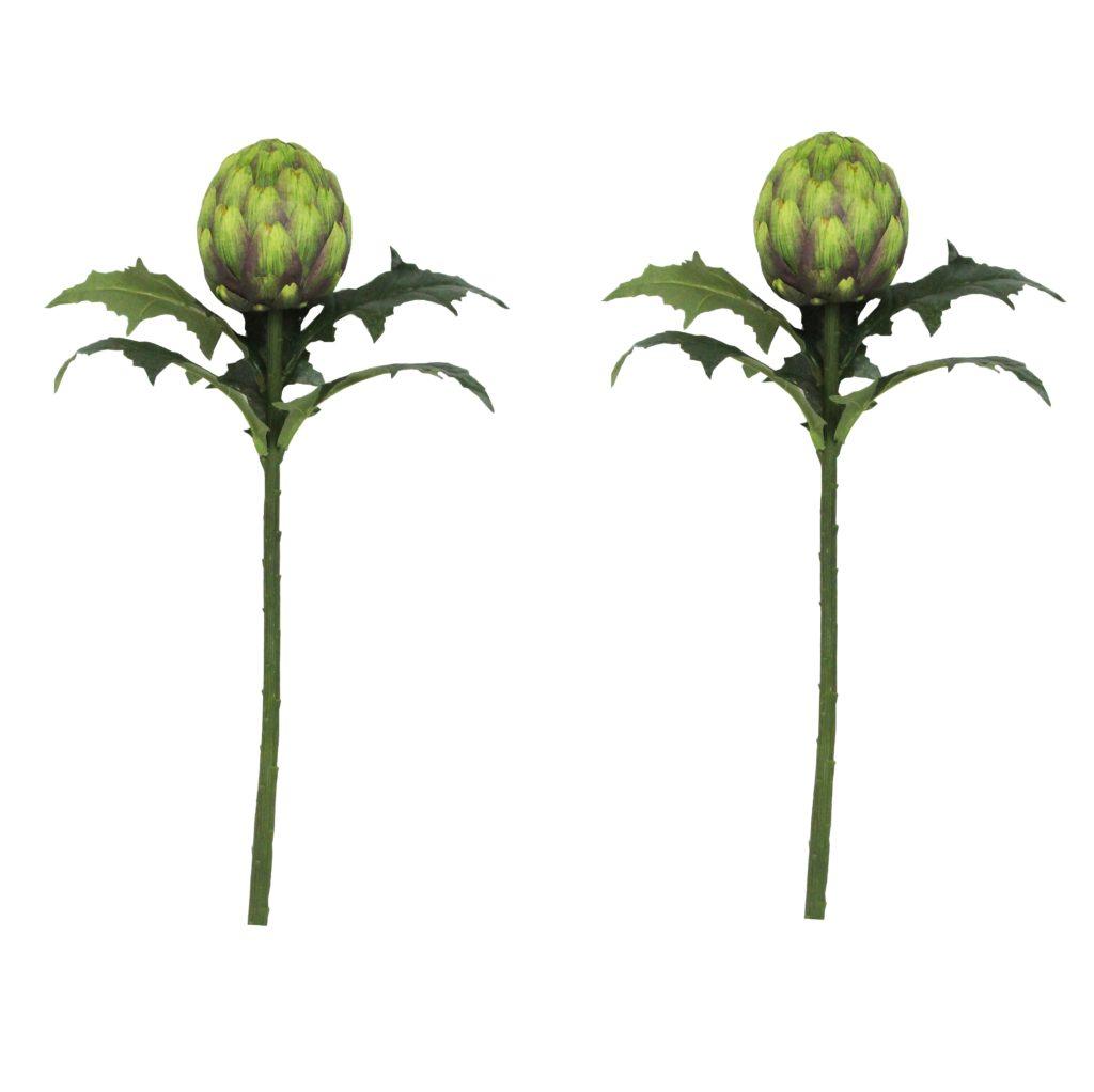artichoke-stem