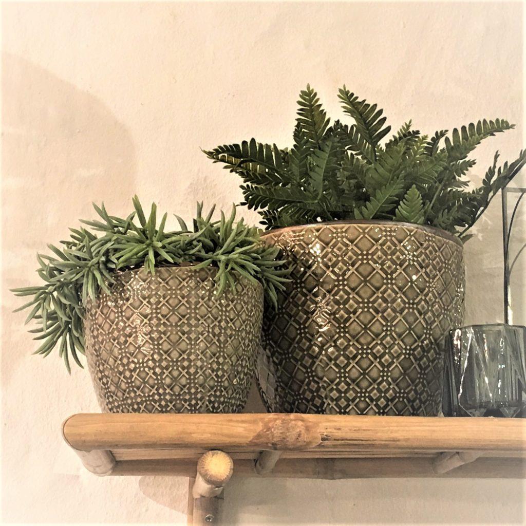 new-planters