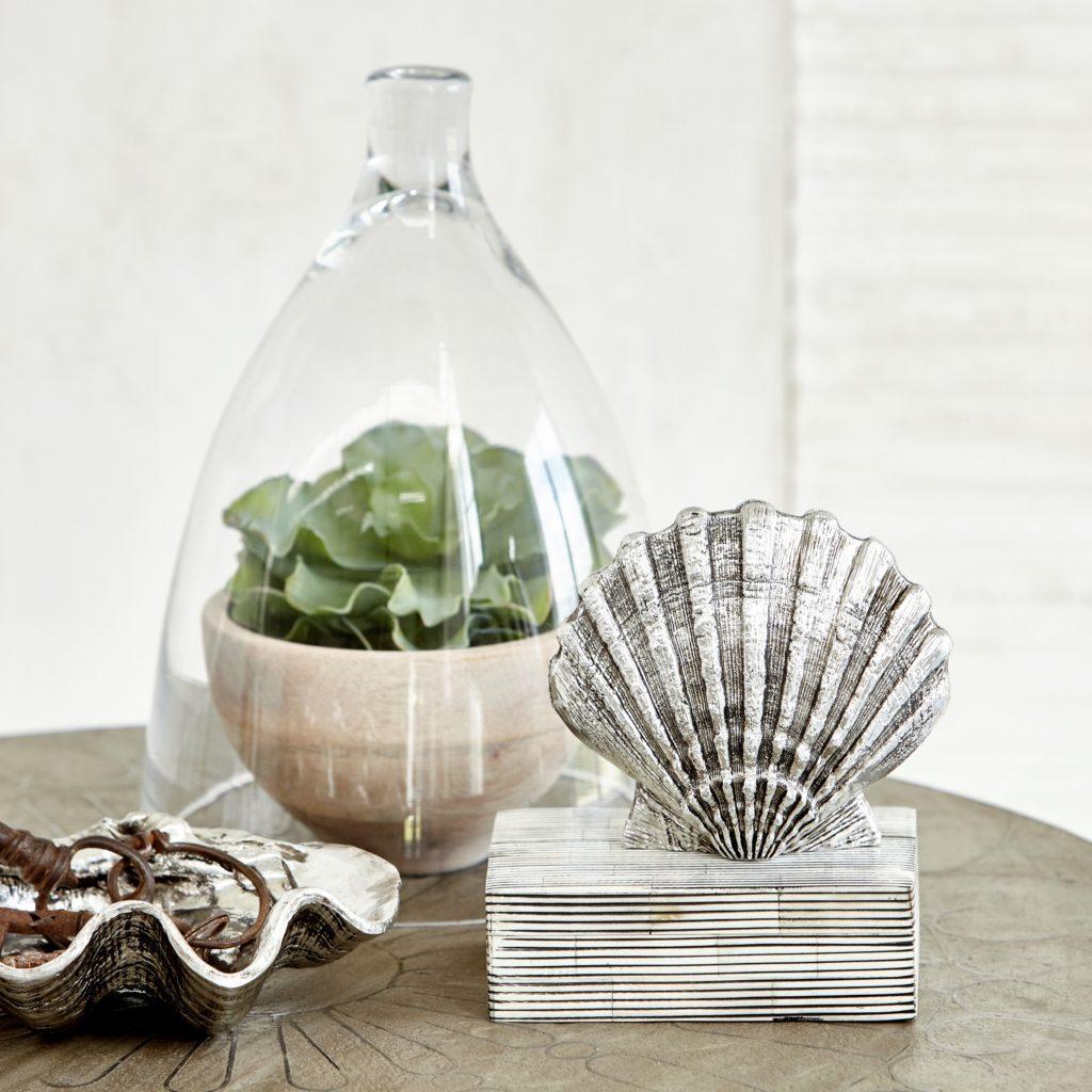 scallop-silver-shell-serafina