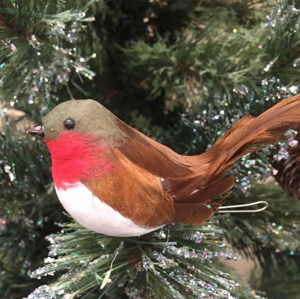 clip-on-robin