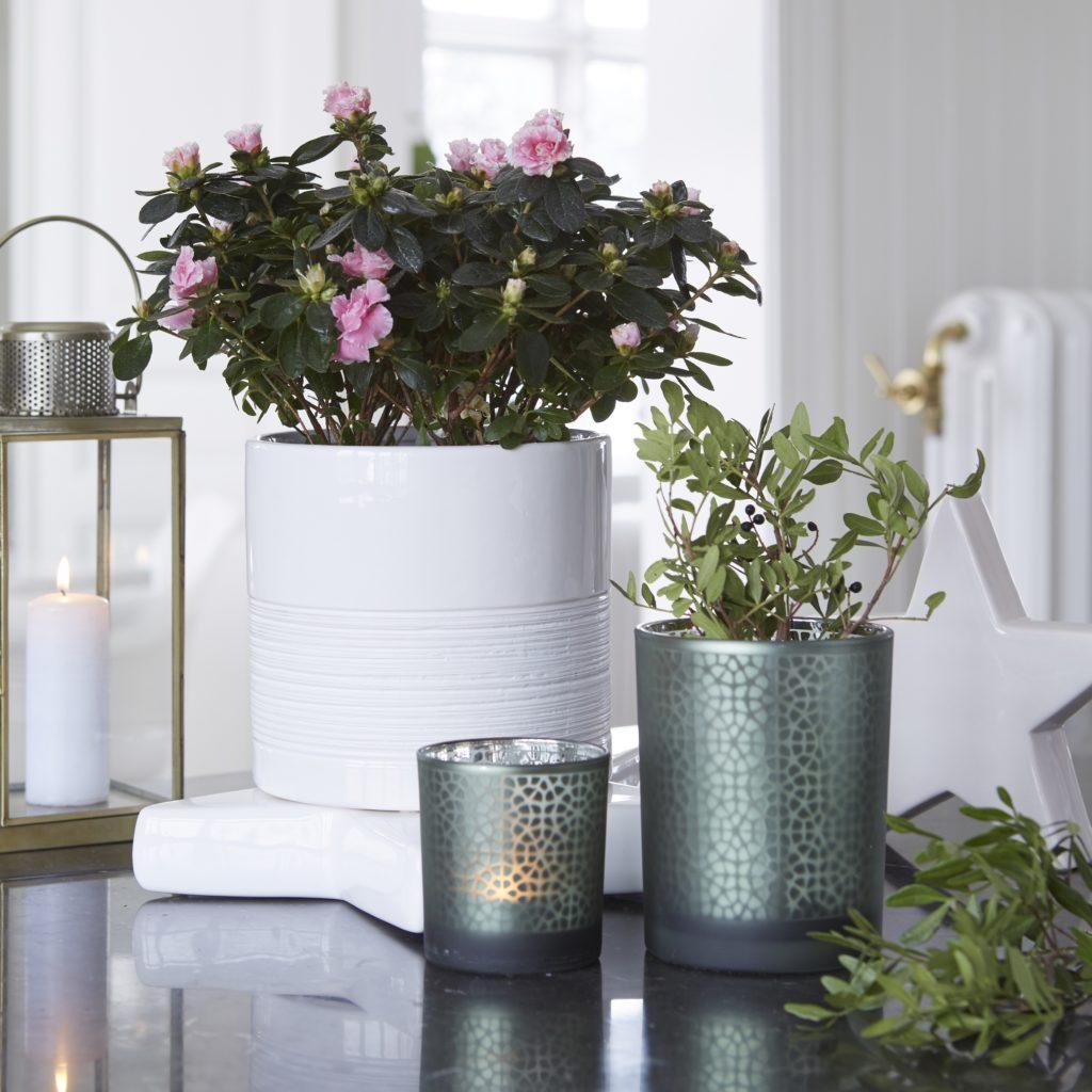 07936-chloe-planters-white-pot-1