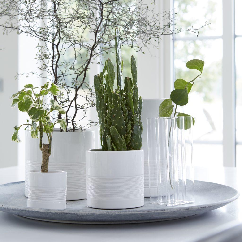 07936-chloe-planters-white-pot