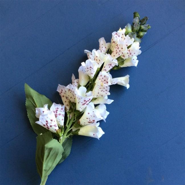 foxglove-stems-1