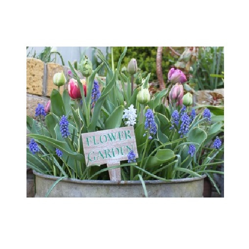 Flower-Garden-Squat-Stake-1