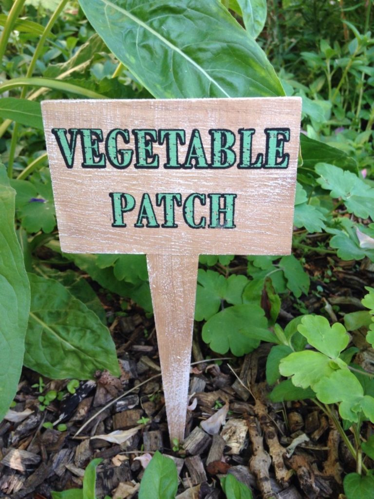 vegtable-patch-stake