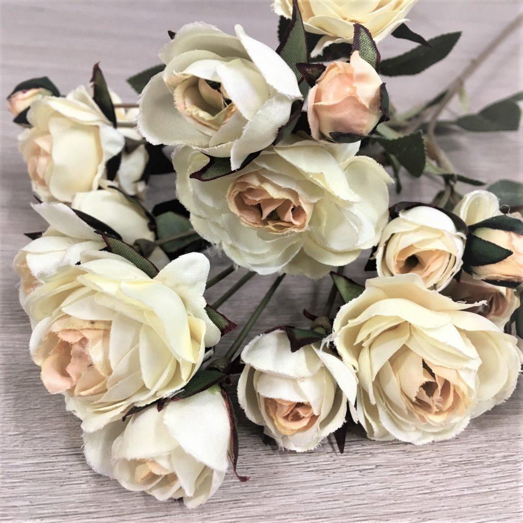roses-cream-1