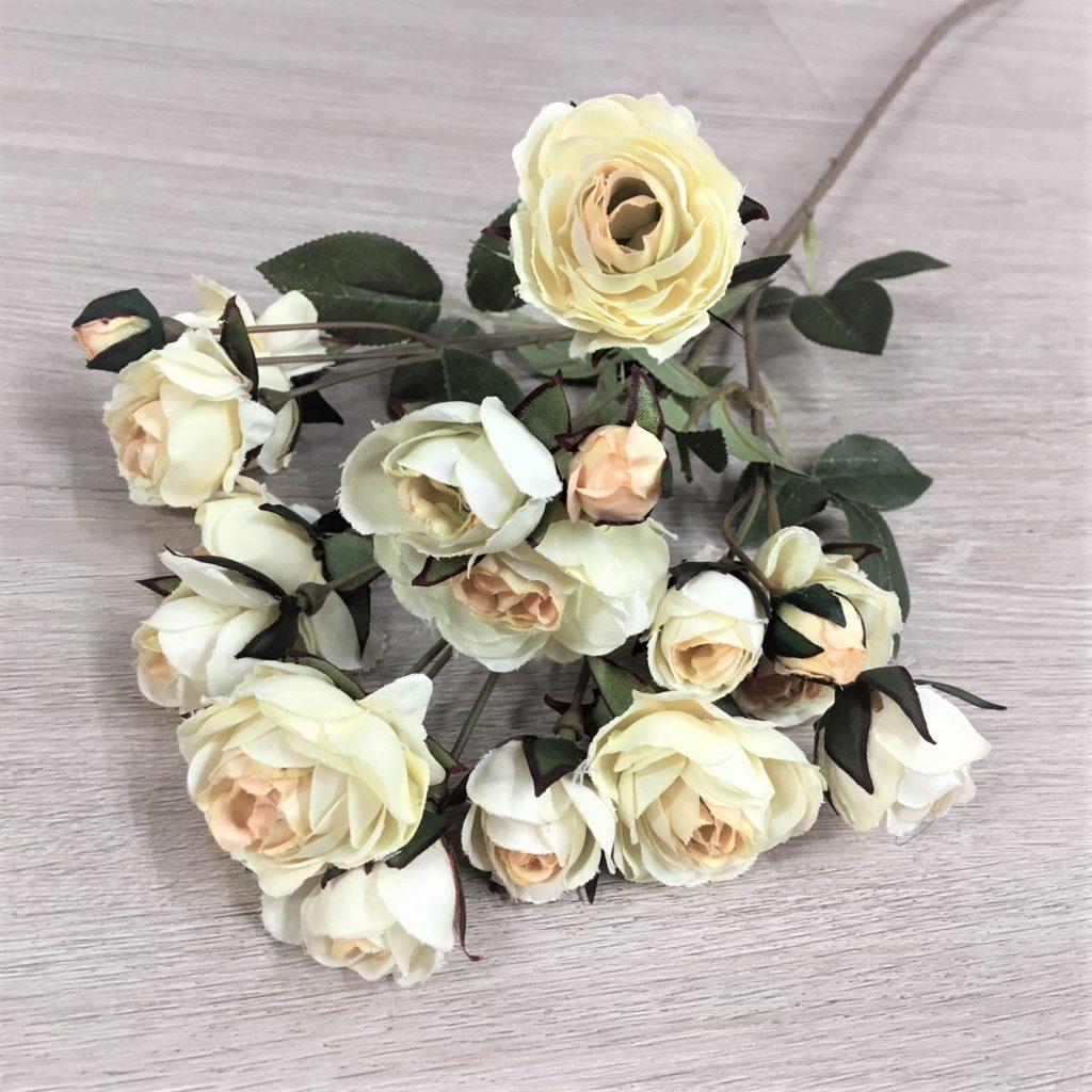 roses-cream-2