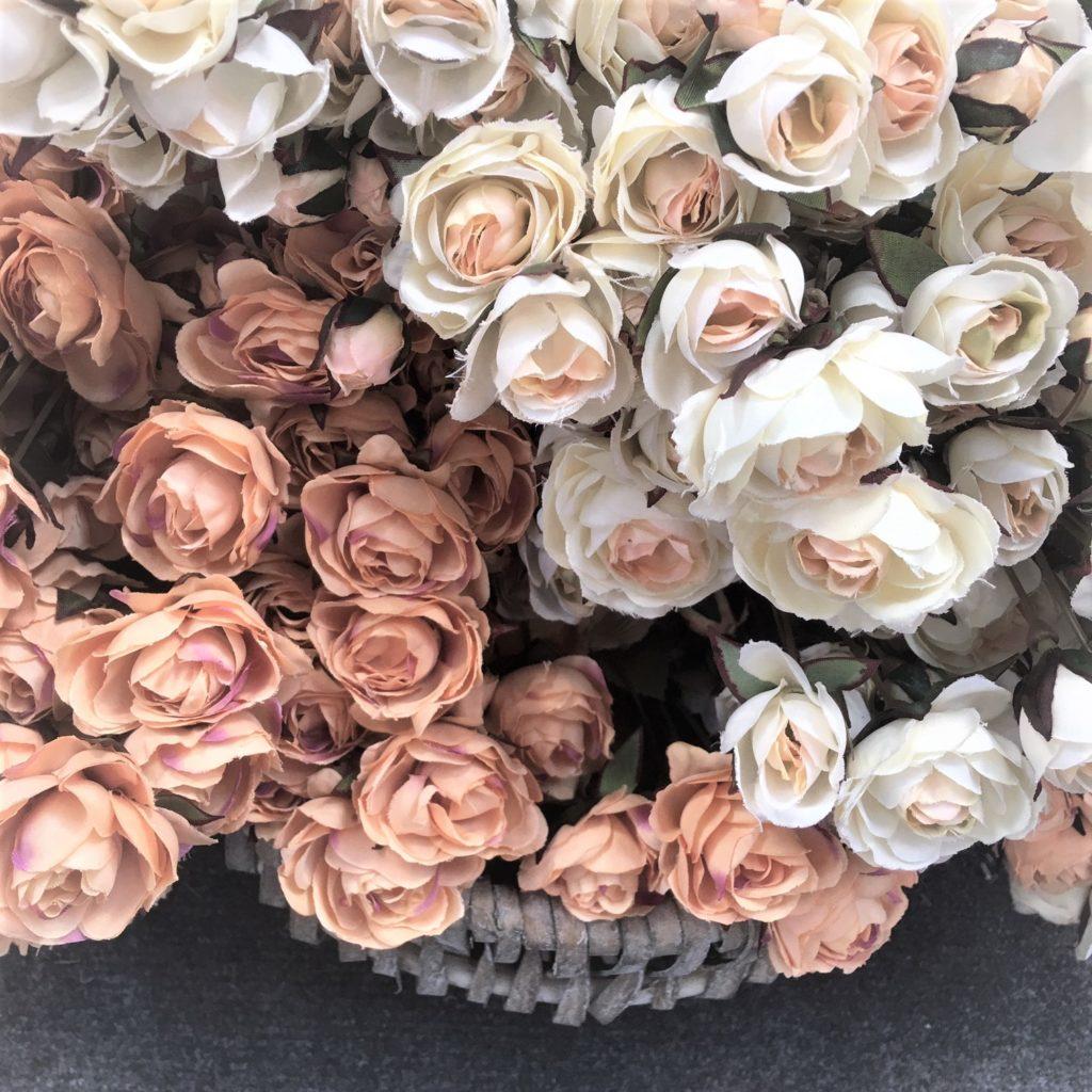 roses-cream-peach