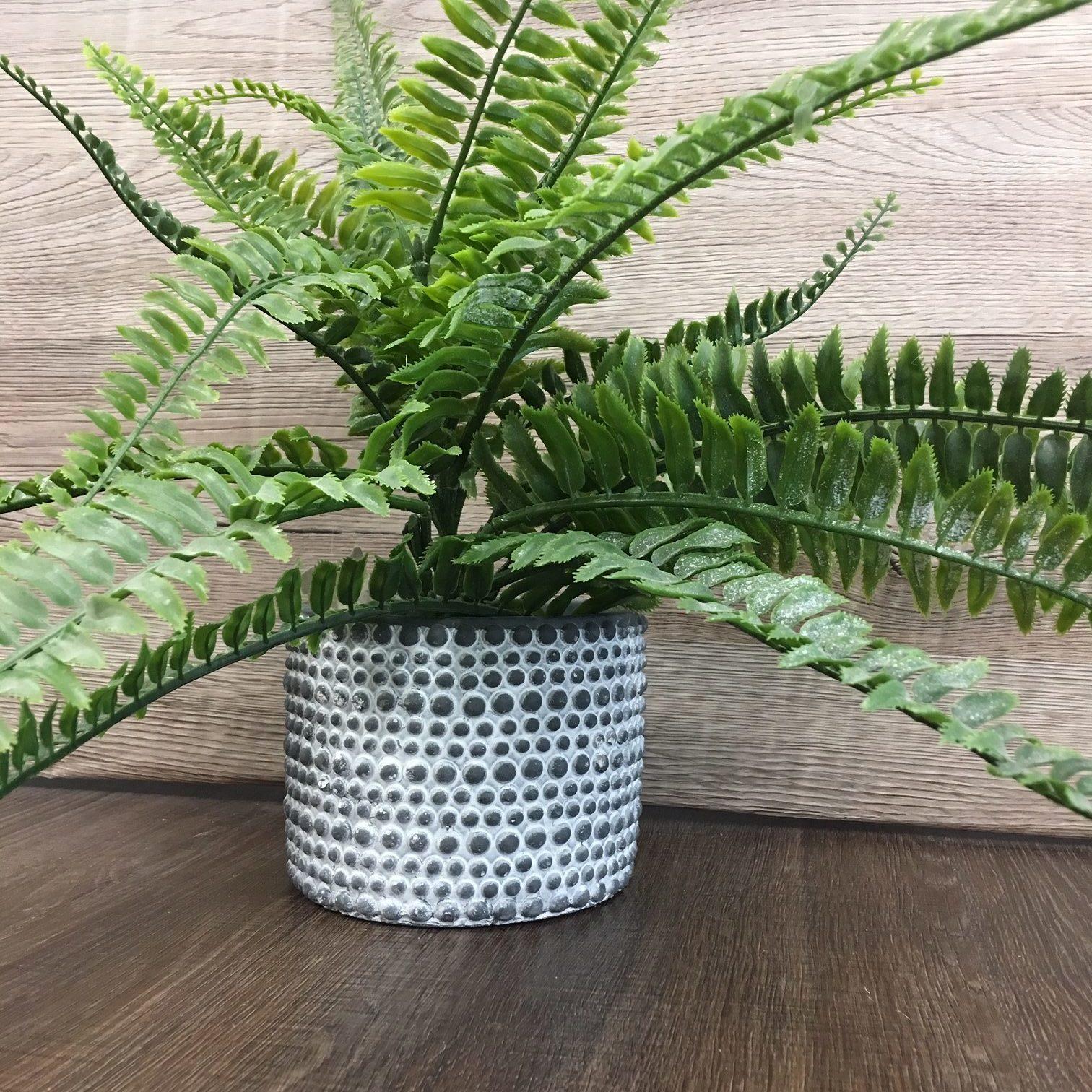 Decorative Black Ceramic Planter Pot Set Tutti Decor Ltd