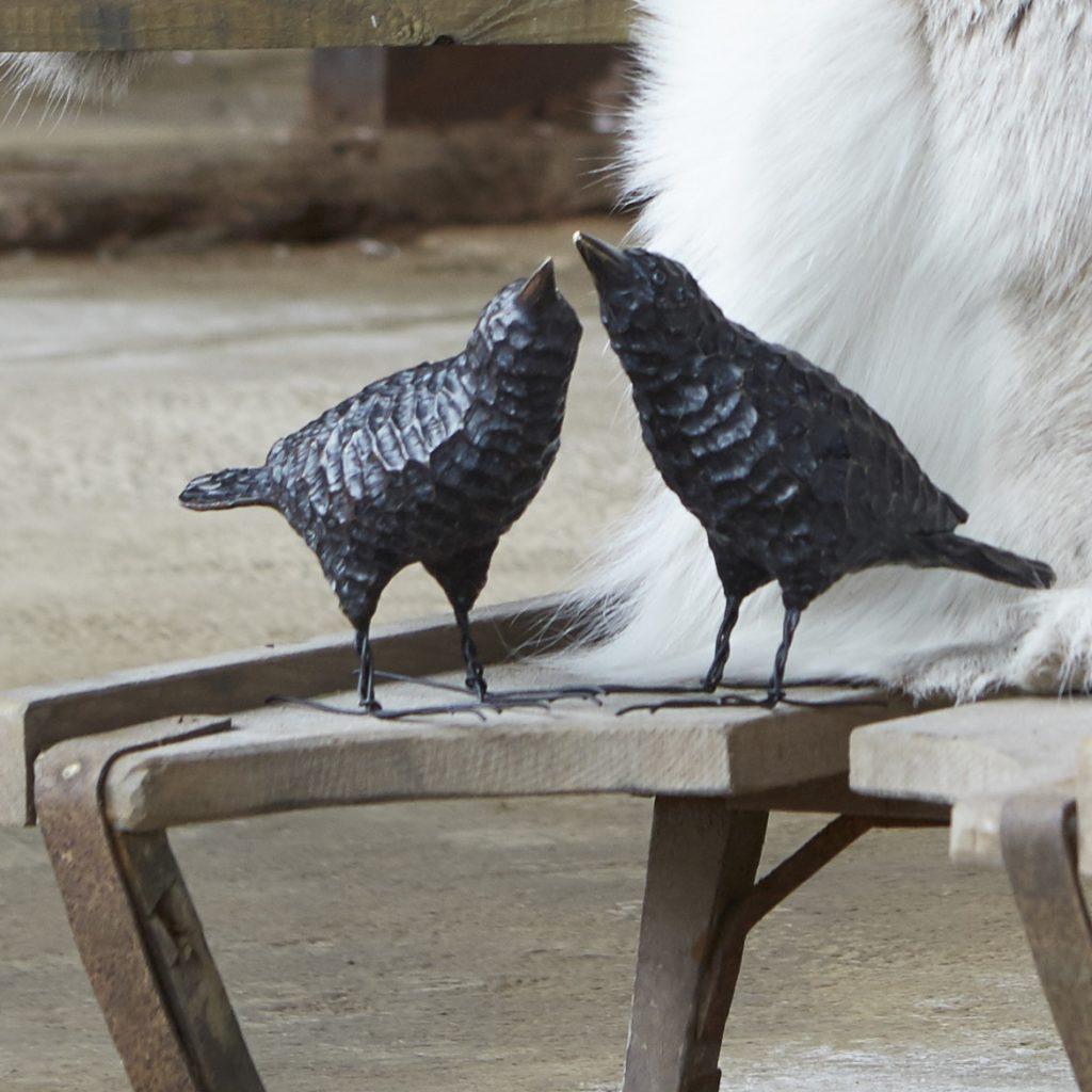raven-birds-mood-a