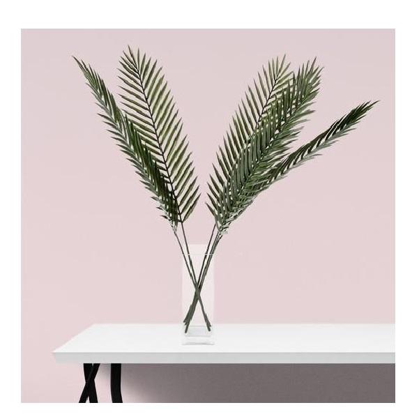 palm-stem